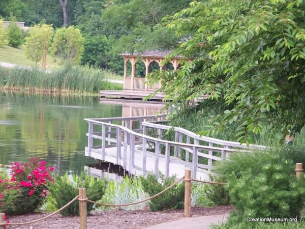 walkway to gazebo by pond (1)
